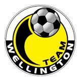 Auckland City v Team Wellington Football Match – 06.02.2013