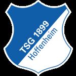 hoffenheim logo badge